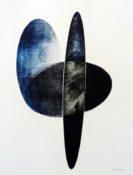 Monotype à l'encre lithographique, 70 x 50 cm, 2017 © Hélène Vans - © ADAGP, Paris 2017 Empreinte originale à l'encre lithographique d'ellipses découpées, domaine de l'Observatoire de Meudon
